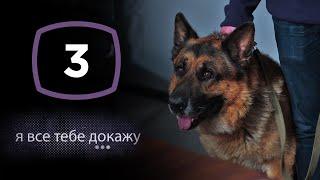 Сериал Я все тебе докажу: Серия 3 | ДЕТЕКТИВ 2020