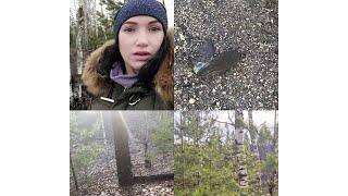 2 часть:а-ля сталкер, увязли в болоте, дикая природа, г Нелидово, Тверская область