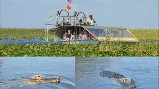 Everglades Alligators Airboat ride - Holiday Park [HD]
