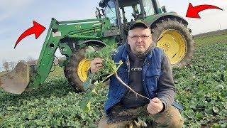 Rolnik z Hollywood Przegląda Swoje Plantacje ☆ Kolejne Prezenty Dla Marka