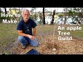 - How to Make an Apple Tree Guild