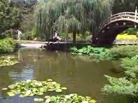 Japanese Gardens At The Huntington Botanical Gardens