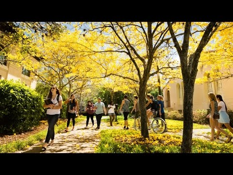 What Rollins Students LOVE About Campus