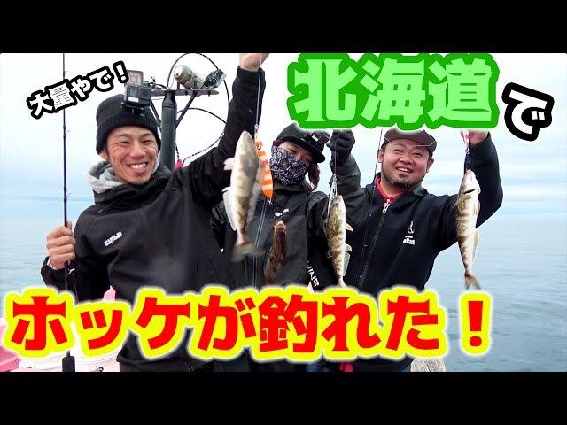 【入れ食い】北海道の海でホッケが大量発生!?#4