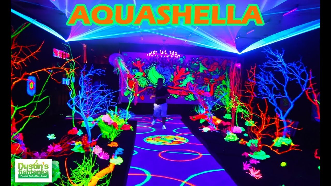 AMAZING AQUARIUM EVENT: Aquashella Brah, Salt and Fresh Water Extravaganza!  - YouTube