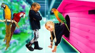 STORE TOUR de TIENDA ANIMALES!! Las Ratitas SaneuB thumbnail