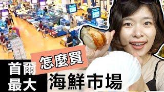 攻略|超巨大韓國海鮮現殺現吃!鷺梁津首爾最大海產市場,如何挑怎麼買 | 韓國旅遊