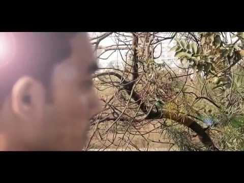 Muskurane Ki Wajah Tum Ho - Unplugged |  Mohammed Irfan |