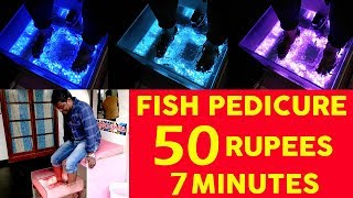 Fish Pedicure  Pondicherry Travel Vlog  Doctor Fish Spa  Video Shop  Fish Spa