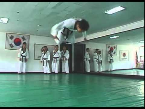 Hapkido Essentials
