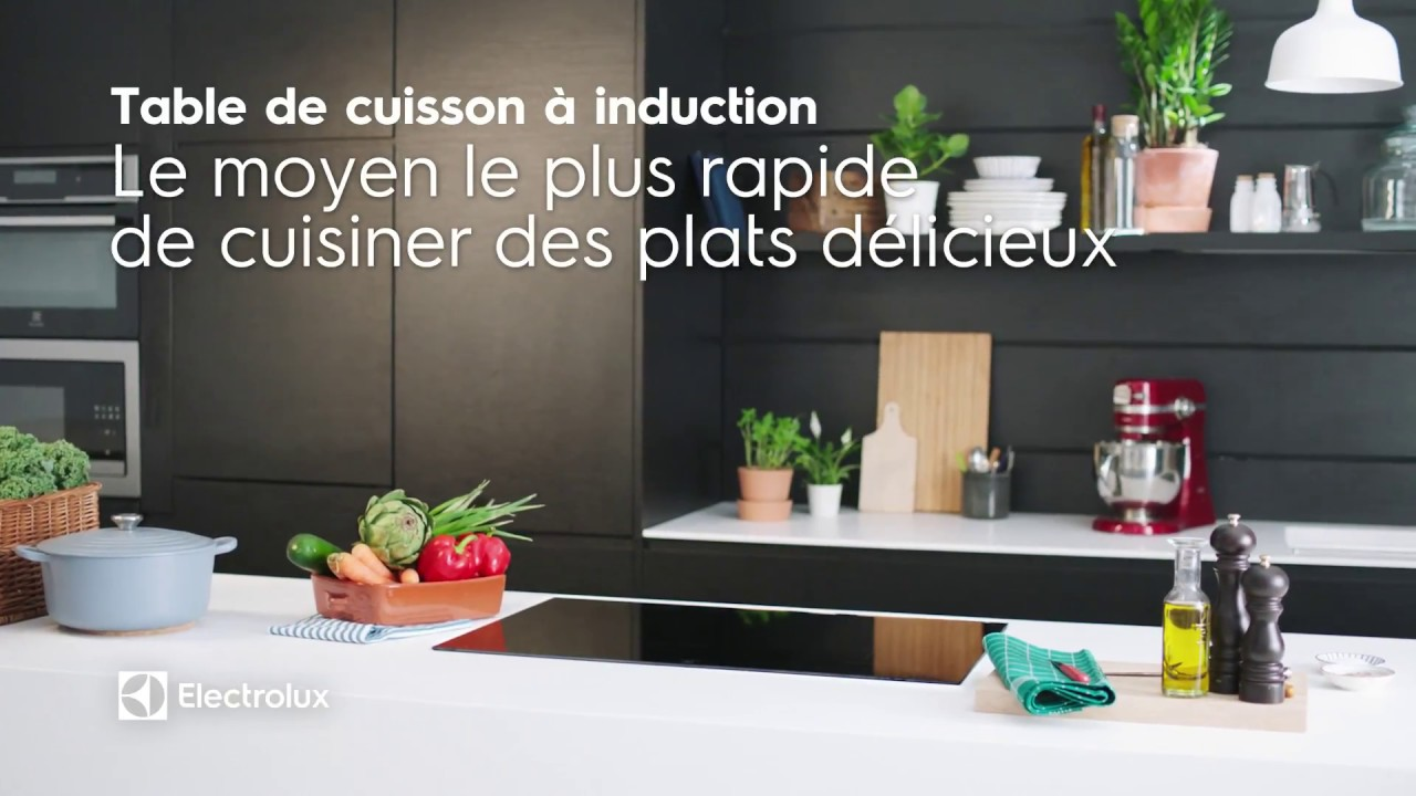 Electrolux Table Induction Youtube