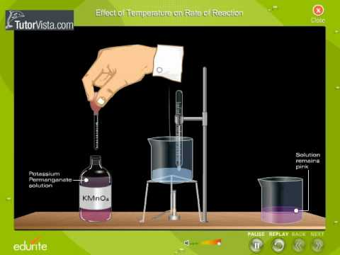 effects of hydrochloric acid on catalase The reaction of pepsinogen with hydrochloric acid produces pepsin  in the digestive tract pepsin effects only partial degradation of proteins into smaller units.