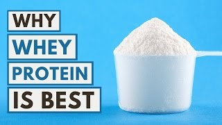 Why Whey Protein Is the Best Protein You Can Take