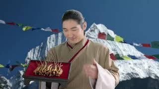 ใหม่! สก๊อต รังนกแท้ ถั่งเฉ้าโสมเกาหลี