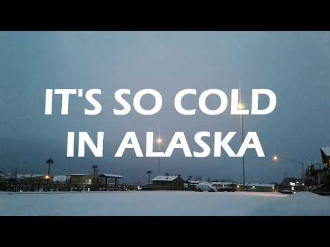 It's So Cold in Alaska by Shane Kimberlin | Book Trailer