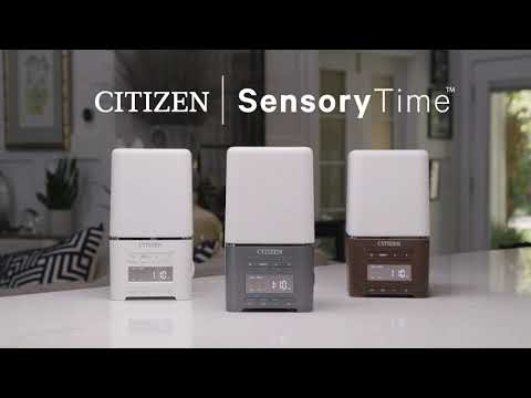 Scents of Space: Citizen Helps to Create a Relaxing Environment at Home