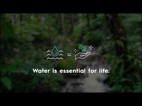 We all need water for a healthy life – but how much?