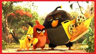 Энгри Бердс в Кино Факты / Angry Birds ♛ 2016
