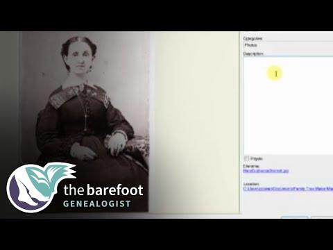Family Tree Maker: Categorizing Media | Ancestry