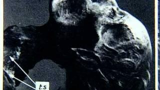 The Mystery Of The Cocaine Mummy.avi