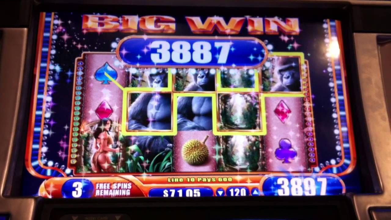 Queen Of The Wild Slot Machine Download