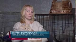 В Томске пройдет ярмарка-раздача животных