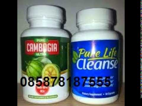 Pure Cambogia Ultra im Test
