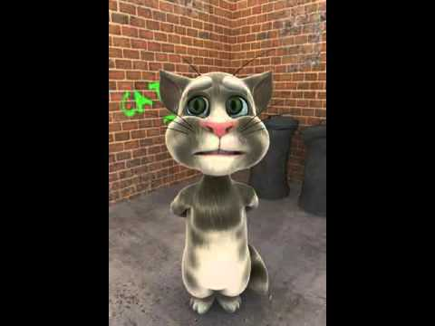 Talking Tom will