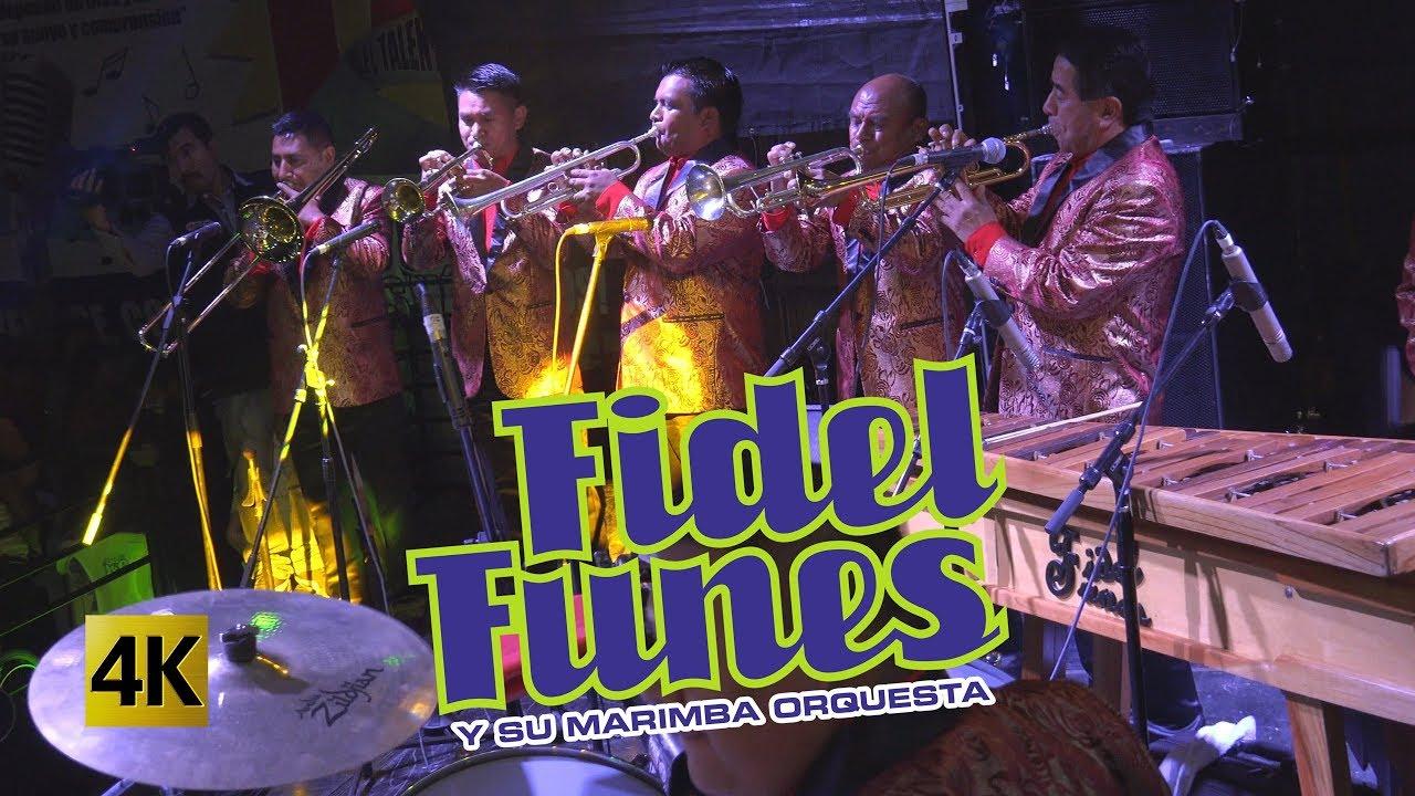 Download Fidel Funes y su Marimba Orquesta  - 36 Años 4K