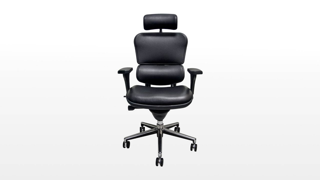 Raynor Ergohuman Chair Assembly Review Youtube