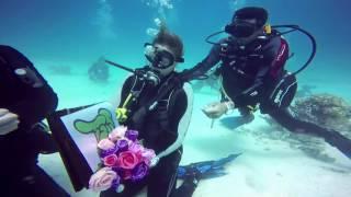 underwater proposal  marsa alam red sea Egypt