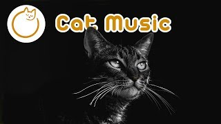 EXTRA-LONG Cat Music - Anxiety Eliminating Cat Songs!