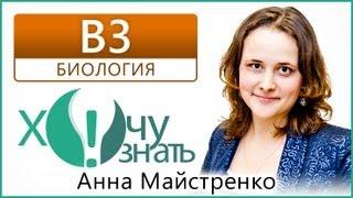В3 по Биологии Демоверсия ЕГЭ 2011 Видеоурок