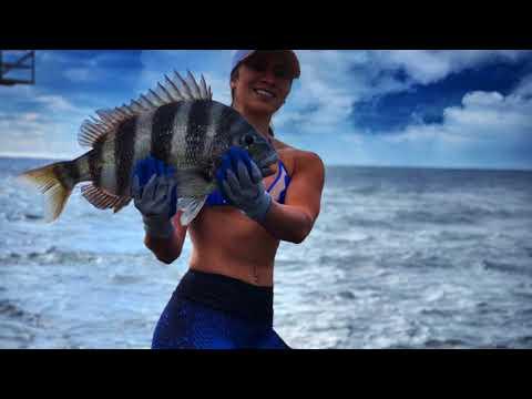 Sheepshead Fishing Off East Pass Jetties In Destin Florida