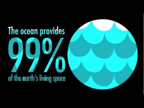 Ocean Climate Change