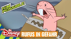 KIM POSSIBLE - Clip: Rufus in Gefahr | Disney Channel