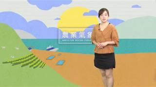 農業氣象1080521