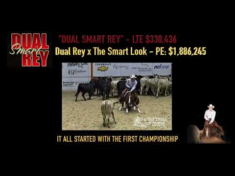 Dual Smart Rey Commercial Producing Champions