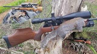 Pest Control with Air Rifles - Squirrel and Rat Shooting - Getting it Straight(Judging by some of the comments we see, it either appears we get lots of vermin every time and/or our efforts aren't having any affect on the pest populations., 2016-10-02T03:45:03.000Z)