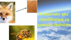 Construire une classification en groupes emboités