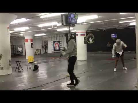 Cobra fencing club