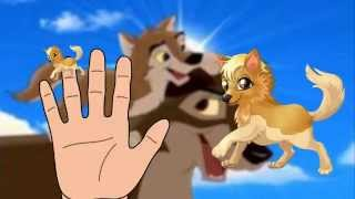 finger family wolf Cartoons Animation