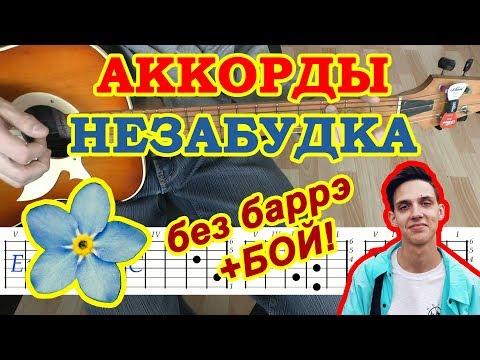 Незабудка Аккорды ♪ Тима Белорусских ♫ Разбор песни на гитаре 🎸 Бой Текст