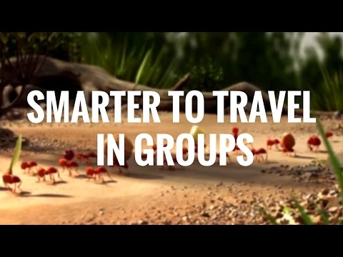 Smarter To Travel In Groups
