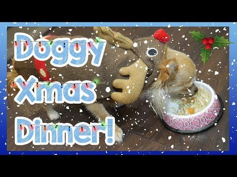diy-dog-friendly-christmas-dinner!-how-to-make-an-easy-homemade-christmas-dinner-for-your-dog!-🎅🍗