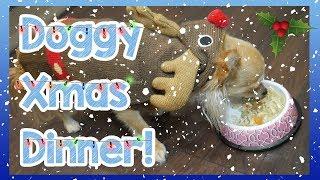 DIY Dog Friendly Christmas Dinner! How to Make an Easy Homemade Christmas Dinner for Your Dog! 🎅🍗