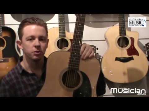 Entry Level Guitar: Acoustic guitars  price & construction