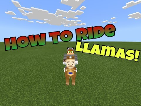 how-to-ride-llamas-in-minecraft-pe!