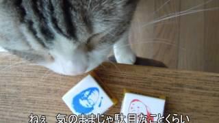 森恵さんの曲をvocaloidのMeguさんに歌ってもらいました。