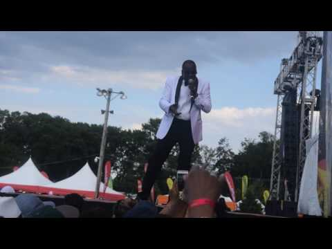 LEROY SIBBLES PERFORMS AT GROOVIN IN THE PARK 2017